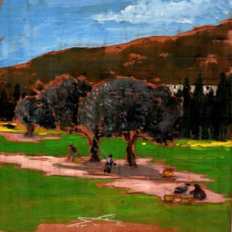 la raccolta delle olive 7