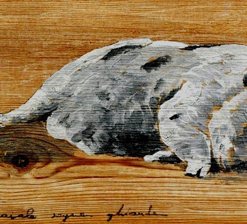 non è vero che il maiale sogna ghiande tempera su tavola cm. 38 x 71